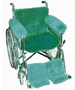 Wheelchair Covering