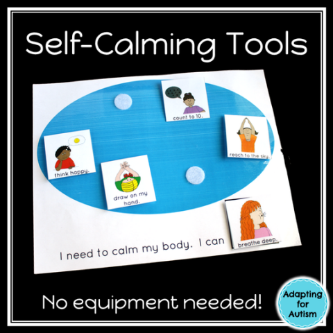 Coping and Self Calming Skills