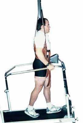 Morgan Lumbar Traction Exercise Harness (Hmhmr)